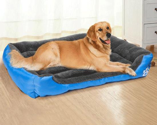 letto-per-cani-5