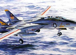 f14 tomcat scala 1/48